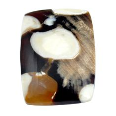 Natural 14.45cts peanut petrified wood fossil 25x17.5 mm loose gemstone s11049