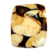 Natural 16.30cts peanut petrified wood fossil 25x18.5 mm loose gemstone s11068