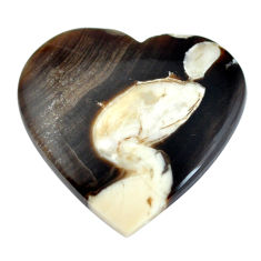 Natural 19.45cts peanut petrified wood fossil 25x26 mm loose gemstone s11054