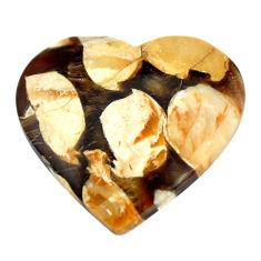 Natural 19.35cts peanut petrified wood fossil 25x26 mm loose gemstone s11075