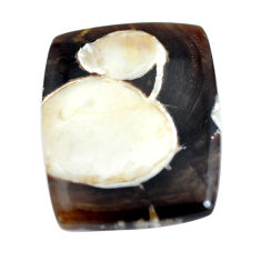 Natural 20.10cts peanut petrified wood fossil 26.5x21.5 mm loose gemstone s11050