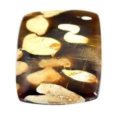 Natural 23.45cts peanut petrified wood fossil 26.5x22 mm loose gemstone s11067