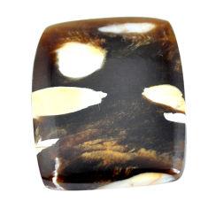 Natural 27.40cts peanut petrified wood fossil 26x20 mm loose gemstone s11043