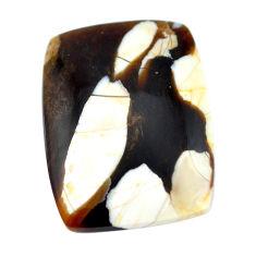 Natural 17.45cts peanut petrified wood fossil 26x20 mm loose gemstone s11046