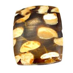 Natural 23.45cts peanut petrified wood fossil 27x20 mm loose gemstone s11066