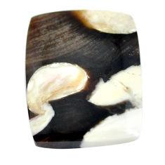 Natural 30.15cts peanut petrified wood fossil 27x21 mm loose gemstone s11041