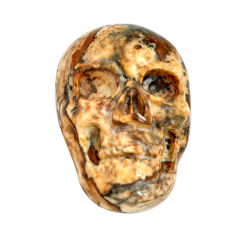 Natural 7.40cts picture jasper brown 18x12 mm skull face loose gemstone s13307