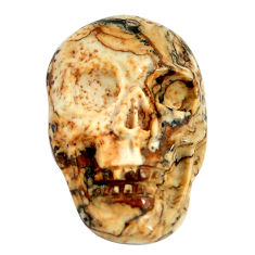 Natural 12.35cts picture jasper brown 22.5x15 mm skull loose gemstone s13271