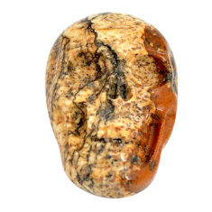 Natural 13.45cts picture jasper brown 22.5x15 mm skull loose gemstone s13272