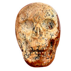 Natural 14.45cts picture jasper skull carving 22.5x15 mm loose gemstone s9994