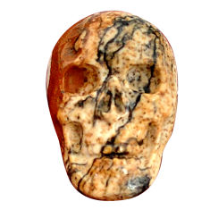 Natural 14.45cts picture jasper skull carving 22.5x15.5 mm loose gemstone s9992