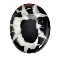 Natural 22.90cts septarian gonads black cabochon 28x21mm loose gemstone s15029