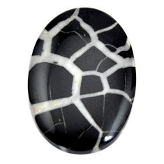 Natural 31.30cts septarian gonads black cabochon 32x21.5mm loose gemstone s15026