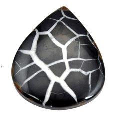 Natural 41.30cts septarian gonads black cabochon 35x28 mm loose gemstone s15035