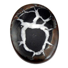 Natural 16.30cts septarian gonads brown 25.5x18.5 mm oval loose gemstone s15049