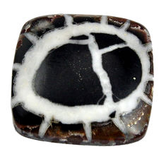 Natural 26.30cts septarian gonads brown cabochon 22x22 mm loose gemstone s15041