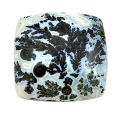 Natural 22.35cts tree agate white cabochon 21x21mm octagan loose gemstone s13189