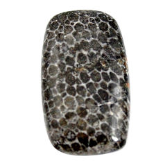 Natural 24.05cts stingray coral from alaska 27x15 mm loose gemstone s15871