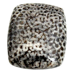Natural 32.40cts stingray coral from alaska black 24x20 mm loose gemstone s15891