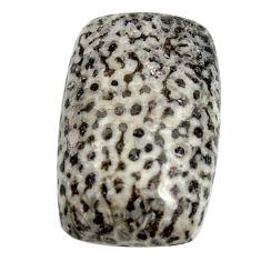 Natural 24.45cts stingray coral from alaska black 25x15 mm loose gemstone s15895