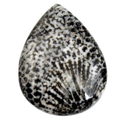Natural 31.30cts stingray coral from alaska 30x22.5mm pear loose gemstone s15900