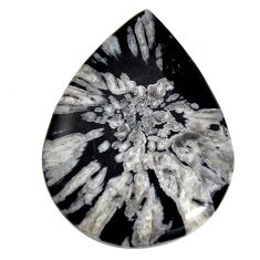 Natural 59.35cts chrysanthemum black cabochon 48.5x35.5 mm loose gemstone s15934