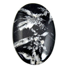 Natural 36.25cts chrysanthemum black cabochon 37.5x24 mm loose gemstone s15947