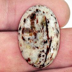Natural 17.35cts astrophyllite (star leaf) 25x16 mm oval loose gemstone s17088