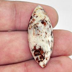 Natural 19.35cts astrophyllite (star leaf) 35x13.5 mm loose gemstone s17091