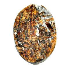 Natural 59.45cts astrophyllite (star leaf) 37x22 mm oval loose gemstone s22150