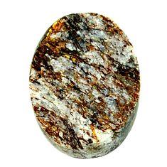 Natural 19.45cts astrophyllite (star leaf) bronze 20x15 mm loose gemstone s21942