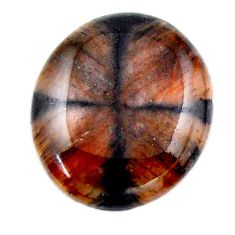 Natural 23.10cts chiastolite brown cabochon 23.5x20mm oval loose gemstone s19241