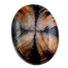 Natural 20.30cts chiastolite brown cabochon 23x17.5mm oval loose gemstone s19248