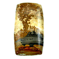 Natural 24.45cts cotham landscape marble 33x17 mm octagan loose gemstone s23538