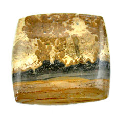 Natural 50.15cts cotham landscape marble 33x33 mm octagan loose gemstone s23524