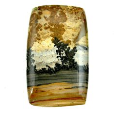 Natural 62.40cts cotham landscape marble 47x26 mm octagan loose gemstone s23521