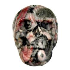 Natural 14.30cts crinoid fossil black 22.5x15 mm skull loose gemstone s18073