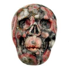 Natural 14.35cts crinoid fossil black 22.5x15.5 mm skull loose gemstone s18065