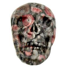 Natural 15.10cts crinoid fossil black 22.5x15mm skull loose gemstone s18062