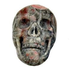 Natural 15.35cts crinoid fossil black 22.5x15mm skull loose gemstone s18069