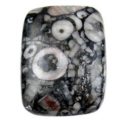 Natural 23.45cts crinoid fossil black cabochon 25x18 mm loose gemstone s19062