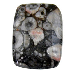 Natural 24.35cts crinoid fossil black cabochon 25x18 mm loose gemstone s19066