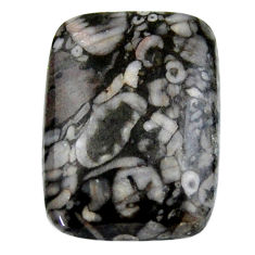 Natural 23.15cts crinoid fossil black cabochon 25x18 mm loose gemstone s19069