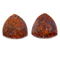 Natural 3.10cts dinosaur bone fossilized 10x10 mm pair loose gemstone s19140