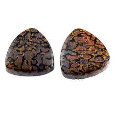 Natural 8.10cts dinosaur bone fossilized 12x12 mm pair loose gemstone s19133