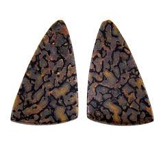 Natural 8.15cts dinosaur bone fossilized 24x13 mm pair loose gemstone s19135