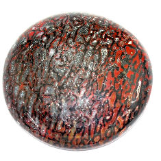 Natural 26.40cts dinosaur bone fossilized 24x24 mm round loose gemstone s23939