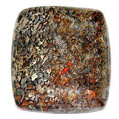 Natural 24.35cts dinosaur bone fossilized 25x22 mm octagan loose gemstone s23922