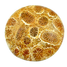 Natural 18.10cts fossil coral petoskey stone 19x19mm round loose gemstone s22953