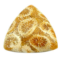Natural 11.15cts fossil coral petoskey stone 20x19 mm loose gemstone s22942